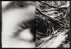"""12° Concorso Fotografico Nazionale """"Città di Legnago"""", 2° Memorial ANGELO COTOGNI. Termine di presentazione delle opere: 1 agosto 2015"""