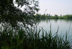 Jonathan EcoCampus, Campo Avventura nella Riserva naturale orientata delle Casse di Espansione del fiume Secchia