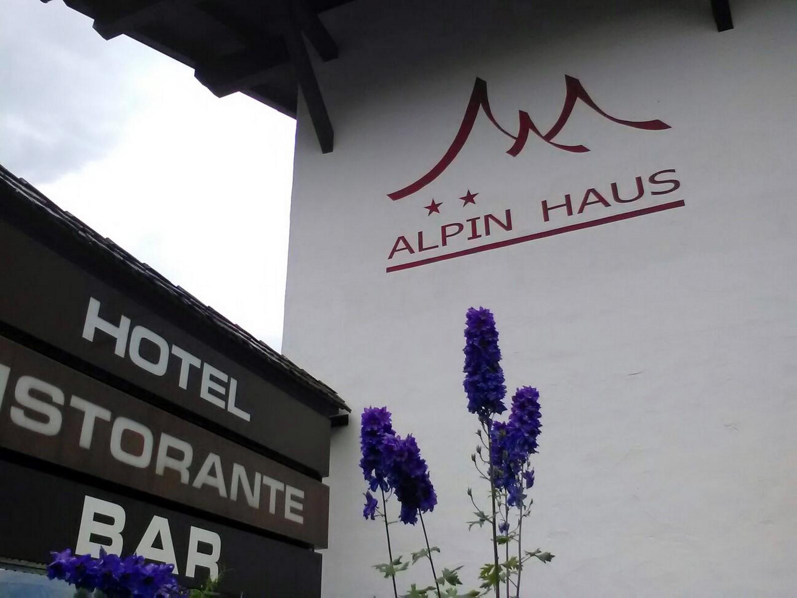 Alpin Haus - Casa Alpina Selva Val Gardena